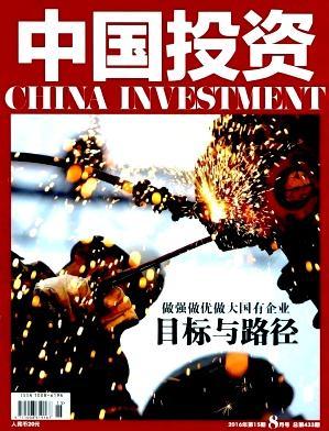 《中国投资》